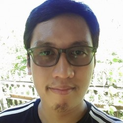 Python, Django, PHP, Laravel, JavaScript, React, C#, iOS, Angular, Web